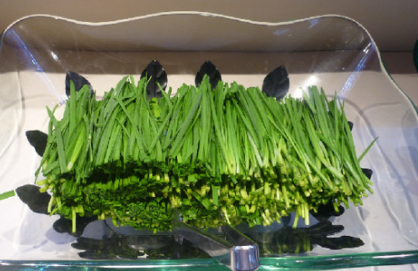 果蔬百科韭菜的药用价值与功效